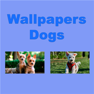 Wallpapers - Dogs